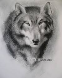 free online drawing lessons