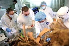 exclusive siberian scientists announce u0027high