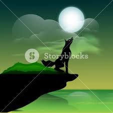 background for halloween banner or background for halloween party wolf on night background