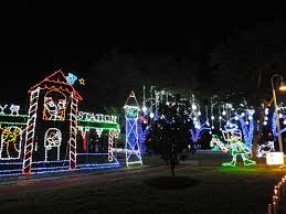 Christmas Lights At Houston Zoo of golden roses christmas on the island galveston texas