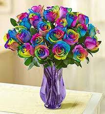 happy birthday roses delivery 1800flowers com