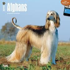 afghan hound keyring afghan hound calendars stationery and mousepads