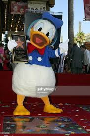 hollywood walk fame honors donald duck photos images