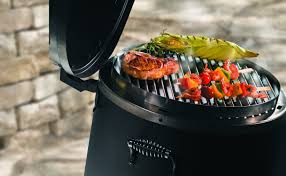 252 Best Outdoor Cooking Images On Pinterest Outdoor Cooking by Amazon Com Char Broil The Big Easy Tru Infrared Smoker Roaster