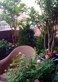 How To Make A Patio Garden 115 Best Balcony Garden Images On Pinterest Apartment Gardening
