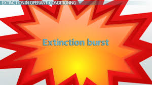 what is extinction in conditioning definition u0026 explanation