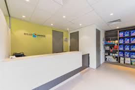 veterinary practice designs floor plans and fitouts perfect