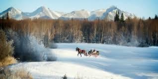 kenai ak horseback lessons nearsay