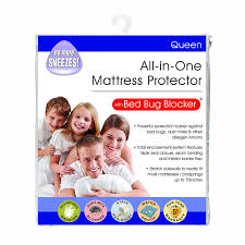 One Bed Bug Amazon Com Bed Bug Blocker Hypoallergenic All In One Breathable
