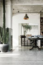 home interior design blogs on trend succulents and cacti for interiors vkvvisuals com