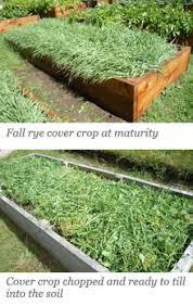 eartheasy blog6 tips for building soil for your raised garden beds