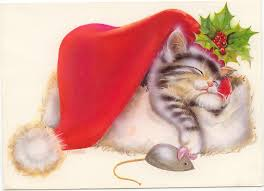 card invitation sles design of cat cards cat
