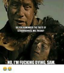 Sam Meme - do you remember the taste of strawberries mr frodop no i m