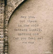 Pink Floyd Lyrics Comfortably Numb 74 Best Pink Floyd Art Images On Pinterest Pink Floyd Art Music