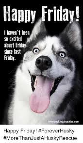 Happy Friday Meme - happy friday i haven t been so excited about friday since last o