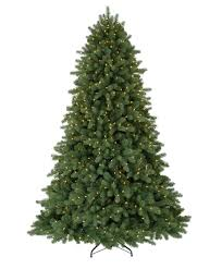 ft tree classic noble fir classics for sale
