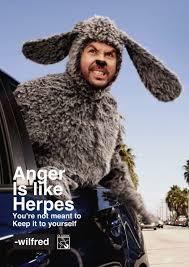 Wilfred Meme - 18 best wilfred images on pinterest tv series cinema and comedy