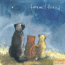 pet sympathy card suitable for cats or dogs your tears