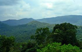 eastern and western ghats india u0027s longest forest trekking and canopy walk to come up in