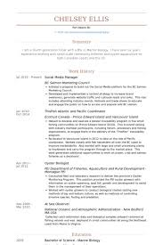 Manager Resume Sample by Social Media Manager Resume Samples Visualcv Resume Samples Database