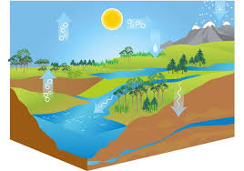 free water cycle diagram vector download free vector art stock