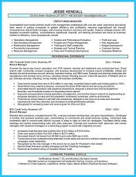 Job Objective Examples For Resumes by Top 25 Best Examples Of Resume Objectives Ideas On Pinterest