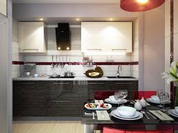 Accessories For Kitchen Cabinets Black Cabinets In Kitchen With Glass Doors Accessories For Black