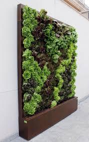 20 cool vertical gardening ideas succulent wall gardens plant