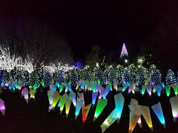 christmas lights in asheville nc enjoying the winter lights at nc arboretum asheville with kid