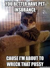 Pet Insurance Meme - better have pet insurance