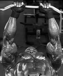 Ronnie Coleman Bench by Training Program Athletespower Com
