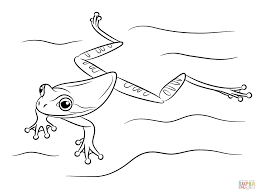 tree frog coloring pages online for kid 9989