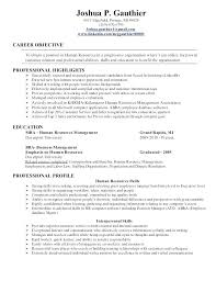 resume objective statements entry level sales positions entry level resume objective objective for sales resume resume for