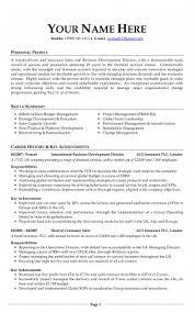 vita resume template free curriculum vitae resume template http www resumecareer