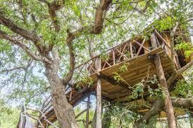 famous tree houses kruger park luxury tree house safari package detour africa
