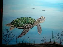 hawksbill sea turtle daisys happy place foundmyself
