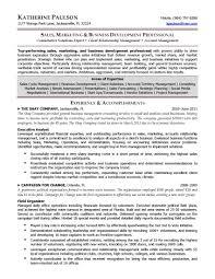 project director resume template project director resume sample sidemcicek com