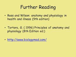 Human Anatomy And Physiology 8th Edition Unit 5 U2013 Anatomy U0026 Physiology Ppt Video Online Download