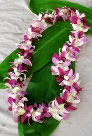 hawaiian leis orchids chuck nicklin
