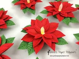 Pointsettia 9 Best Poinsettia Images On Pinterest Christmas Flowers