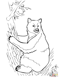 american black bear sits on tree coloring page free printable