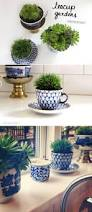 tea cup garden craftaholics anonymous 22 succulent gift ideas