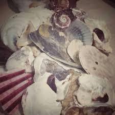 unique seashell collage art sea shell home decor beach home