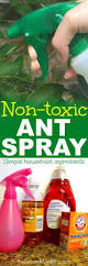 best 25 mosquito spray for yard ideas on pinterest natural bug