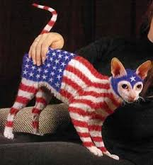 Halloween Costume Cats 30 Awesome Dog Cat Halloween Costumes Slideshow Cattime