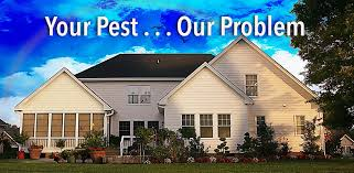 house pest control pest control lake success nyc u0026 long island rest easy pest