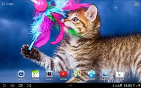 cute halloween kitten wallpaper cat live wallpaper android apps on google play