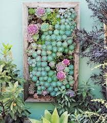 climbing the walls a guide to the vertical garden