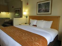 Comfort Inn Downtown Orlando Comfort Suites Downtown Orlando For Information Call 800 327 1390