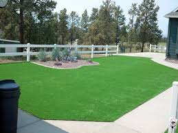 Fake Grass For Backyard by Best Artificial Grass Asheville North Carolina Landscaping Front